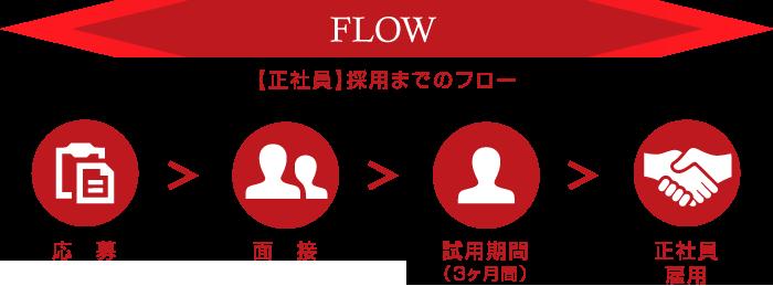 flow_seisya